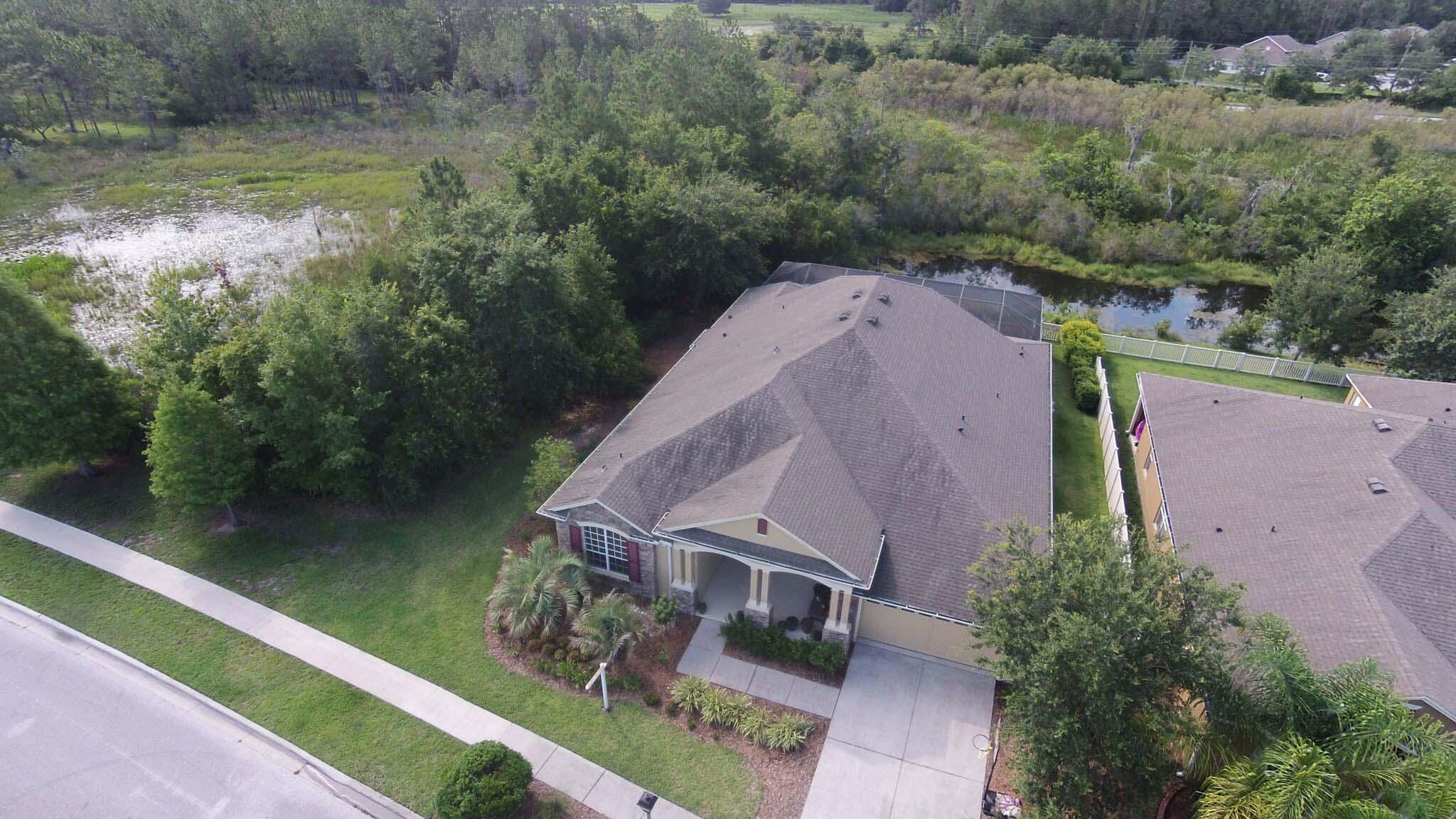 Real Estate Market, Florida, Home, Tampa Bay