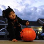 Halloween Tampa Neighborhoods